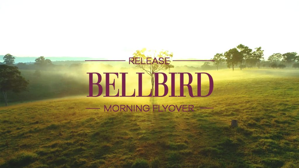 The Bellbird Flyover